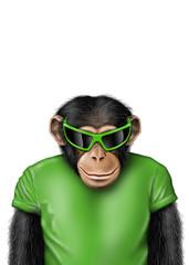 Smartmonkey-Sonnenbrille