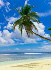 Dream Seascape Heaven