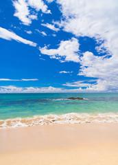 Shore Landscape On a Beach