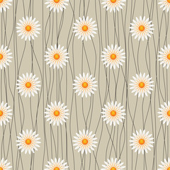 Seamless floral background with camomiles