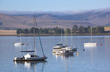 Yachts Moored on the Midmar Dam in the Natal Midlands poster