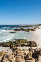 The beach along the coast of Monterey, California