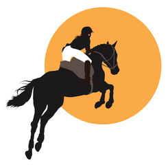 Equestrian sports design