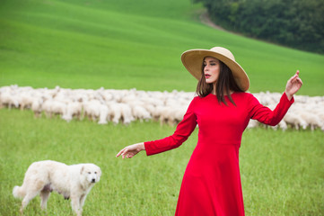 Beautiful woman in a field between the Tuscan sheep
