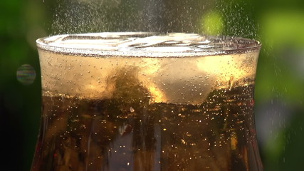 Movement of Bubbles in Sparkling Wine