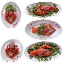 Boiled crayfish closeup.