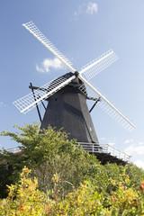 Schwarze Mühle