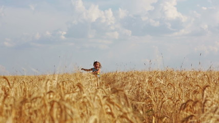 Little girl runs across the field of ripe wheat