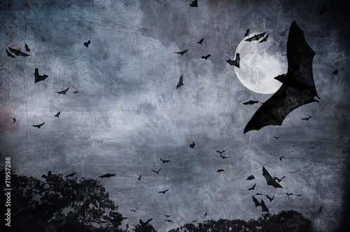 canvas print picture halloween background
