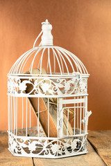 Old book in closed decorative cage