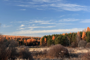 Autumn naiga in the Irkutsk region