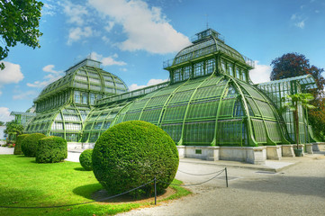 Tropical greenhouse, The Palm House in gardens of Schonbrunn