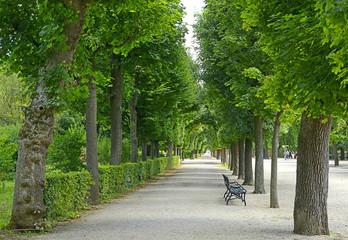 Castle gardens around the Schonbrunn Palace, Austria