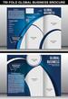 Tri Fold Global Business Brochure Template