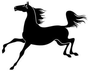 Silhouette of graceful horse galloping