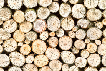 firewood free-standing stack, seamless pattern