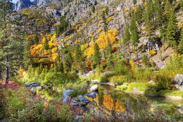 Fall Yellow Red  Colors Reflection Wenatchee River Washington