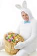 Egg-Loving Senior Bunny