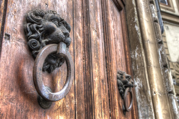 Lion Door Knockers - Florence