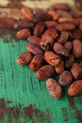 roasted cocoa chocolate beans on wood background