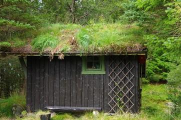 cabane pittoresque dans une fôret