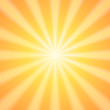 vector sun rays background