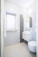 Bright elegant toilet