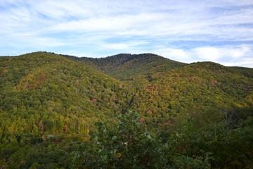 Appalachian Mountain Scene-11