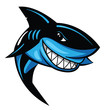 Shark Vector Illustration - 71977245