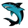 Shark Vector Illustration - 71977249