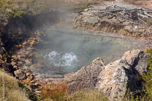 Boiling Water in a Thermal Pool - 71979674