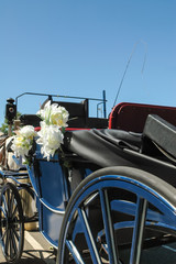 partial view of a traditional horse-drawn bridal carriage
