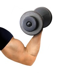 Muscular Arm and Hand Holding Dumbbell