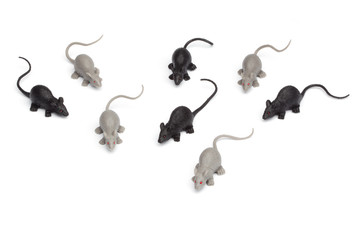 Halloween - Group of Toy Mice - Isolated on White Background