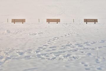 눈이 온 후에