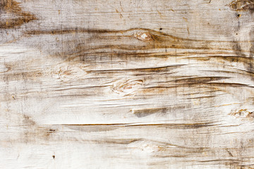 cracked plywood