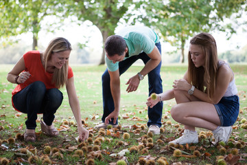 A family is picking up horse chestnuts