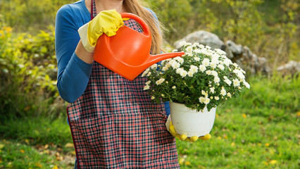 woman caring for flowers outdoors