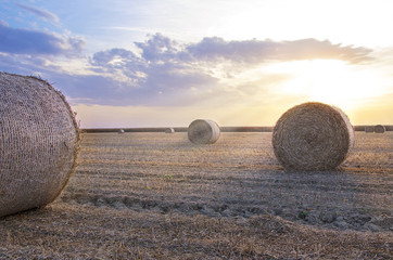 Bales of hay sunset
