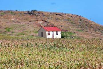 maison rodriguaise typique et traditionnelle