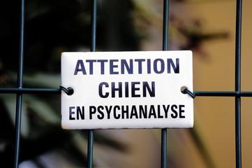 Warning! dog in psychoanalysis
