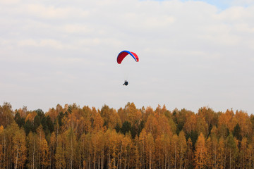 Paraglider over the autumn forest