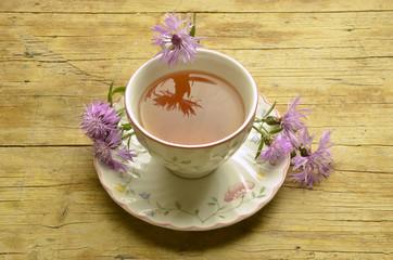 Centaurea cyanus Fiordaliso Bluebottle Kornblume Chaber bławatek