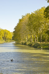 Sunset in Canal du Midi