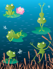 frogs on a bog