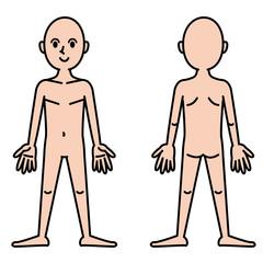人体図_カラー