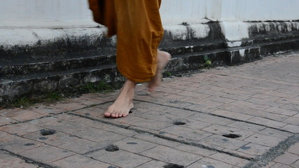 Buddhism Monk walking on the road in morning. HD
