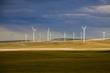 wind farm - 72011830