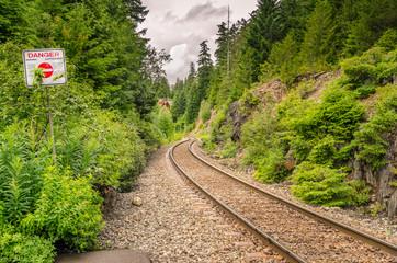 Railway Through a Forest