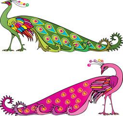 colorful peackocks